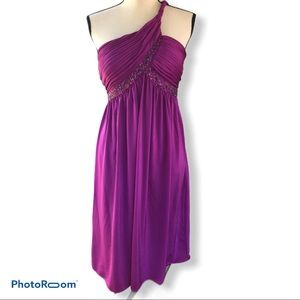 Adrianna Papell | Purple Beaded Party Dress